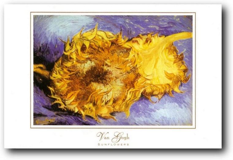 Picture Wall Decoration Vincent Van Gogh Sunflowers Floral Flower Art Print Poster (24x36)