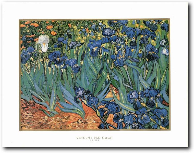 Picture Wall Art Vincent Van Gogh Irises Flower Garden Painting Fine Decor Print Poster (22x28)