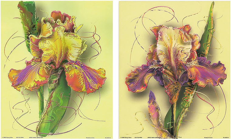 Wall Decoration Art Print - Tulip Flower Picture 16x20 Two Set Floral Painting Poster