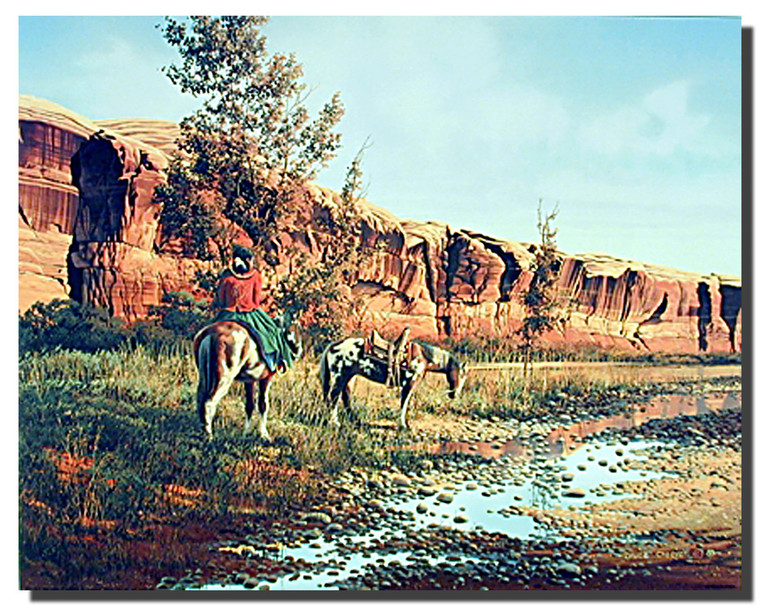Canyon Trail Posters