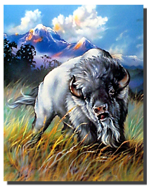 White Buffalo Dan McManis Posters
