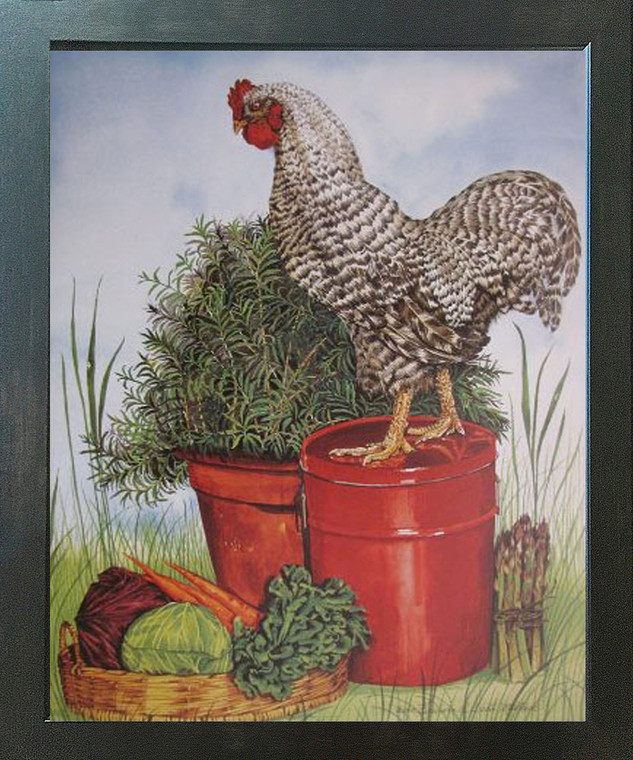 Rock Chicken Art Print Framed Wall Home Decor Barred Plymouth Rooster Picture Espresso Poster