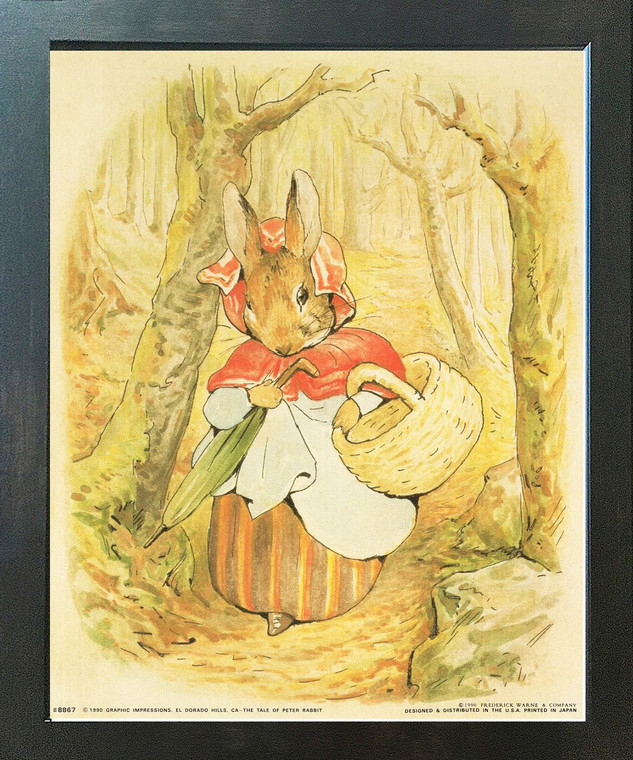 Beatrix Potter - The Tale of Peter Rabbit Kids Room Espresso Framed Wall Picture Art Print (18x22)