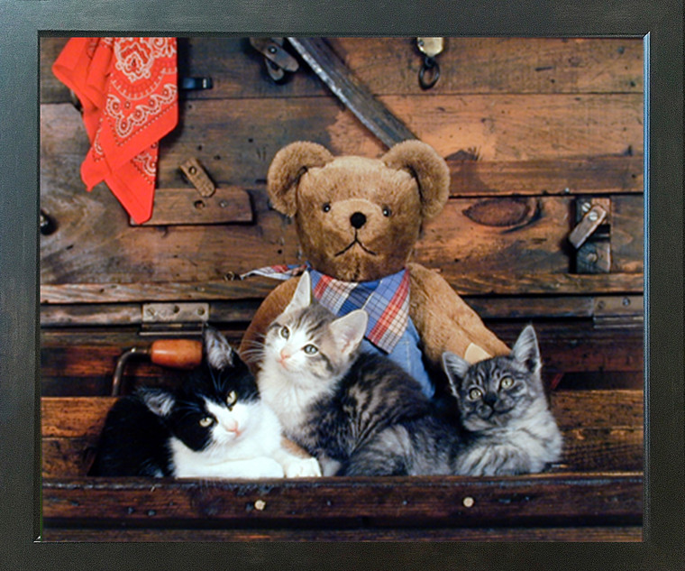 Cute Teddy Bear and Japanese Cats Funny Picture Kids Room Wall Decor Espresso Framed Art Print Poster (18x22)