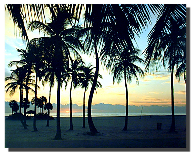 Tropical Sunset Picture Posters
