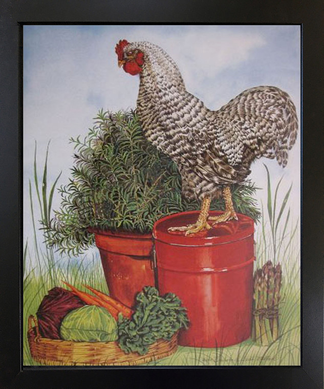 Rock Chicken Art Print Framed Wall Home Decor Barred Plymouth Rooster Picture Black Framed Poster(18x22)