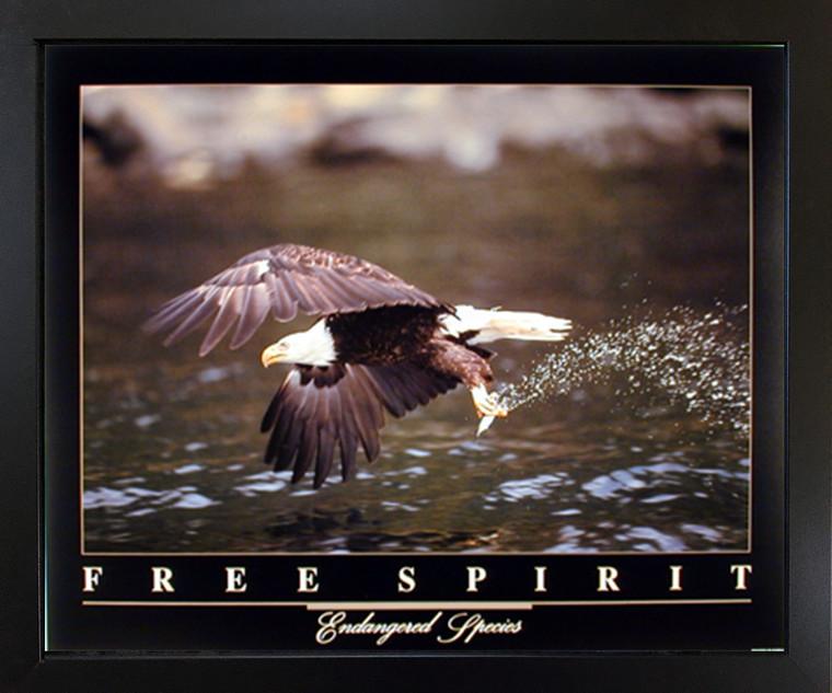 Framed Wall Decoration Bald Eagle Flying Over River Free Spirit Bird Black Framed Picture Art Print (18x22)