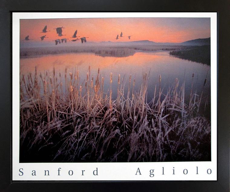 Geese Bird Over Marsh Wild Animal Wall Decor Black Framed Art Print Picture (18x22)