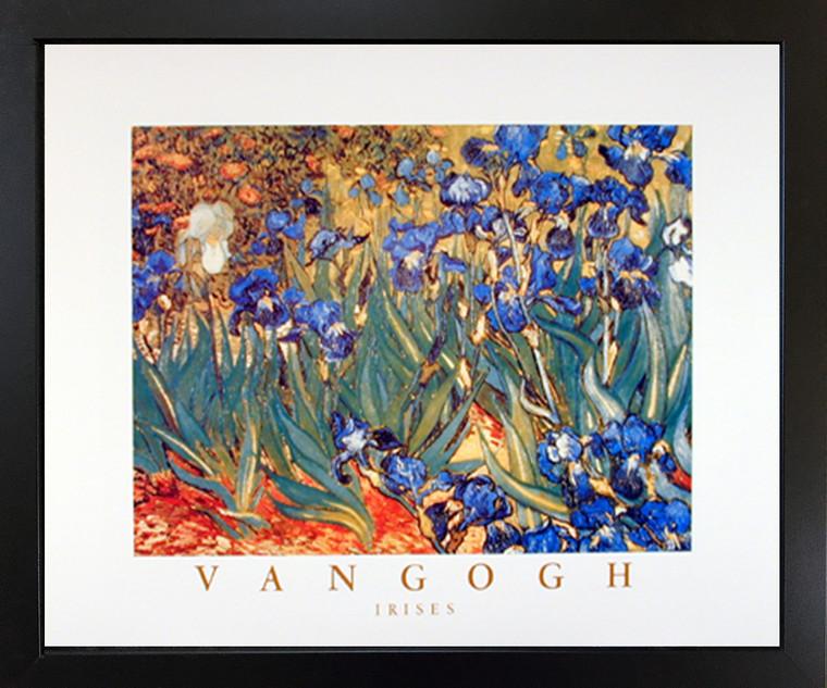 Framed Wall Picture Irises Flower Garden (Floral) Vincent Van Gogh Fine Black Art Print (18x22)