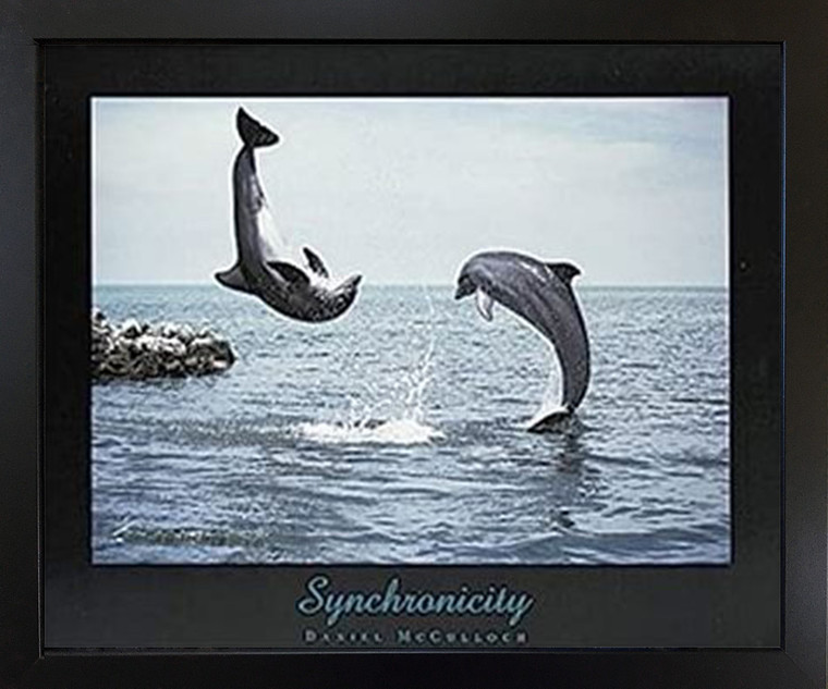 Synchronicity Dolphins Jumping Into Ocean Black Framed Wall Decor Art Print Picture (18x22)