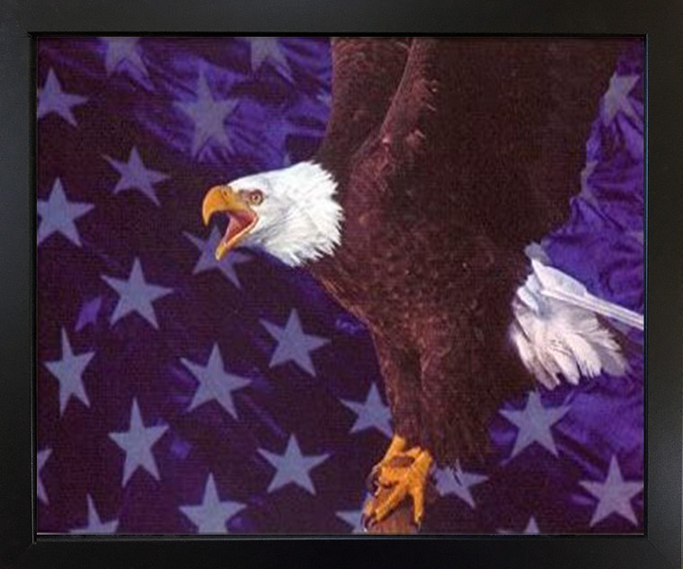 American Bald Eagle Flying Wall Decor Black Framed Art Print Picture (18x22)