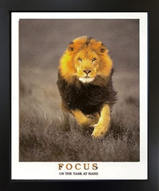 Running Lion Focus On The Task at Hand Wildlife Inspirational Black Framed Wall Decoration Animal Art Print Picture (18x22)