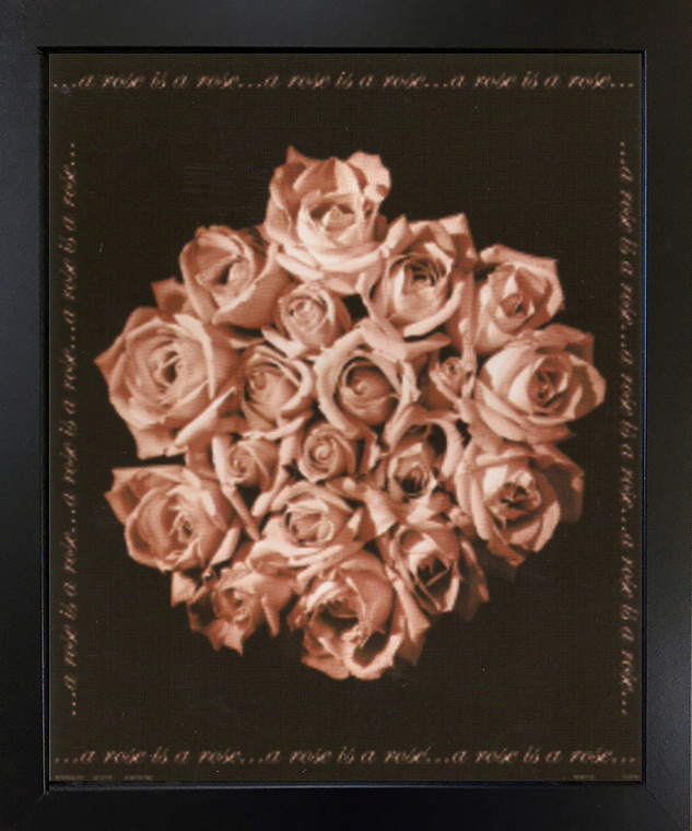 Bunch of Roses Still Life Flower Floral Wall Decor Black Framed Art Print Picture (18x22)
