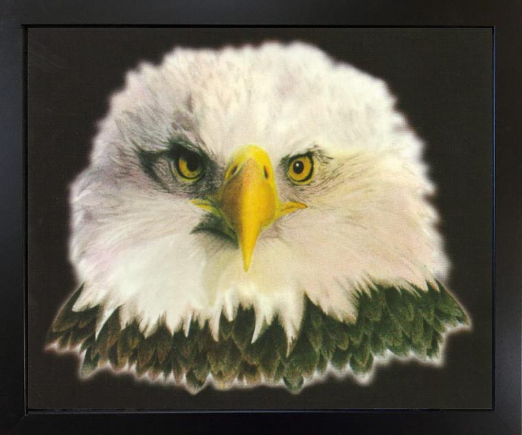 American Bald Eagle National Bird Motivational Black Framed Wall Decor Art Print Picture (18x22)