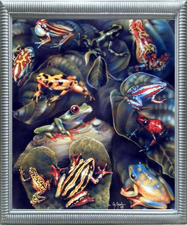 Impact Posters Gallery Framed Wall Picture Decor Frog & Toad Collage (Amphibian) Educational Kids Room Silver Art Print (20x24)