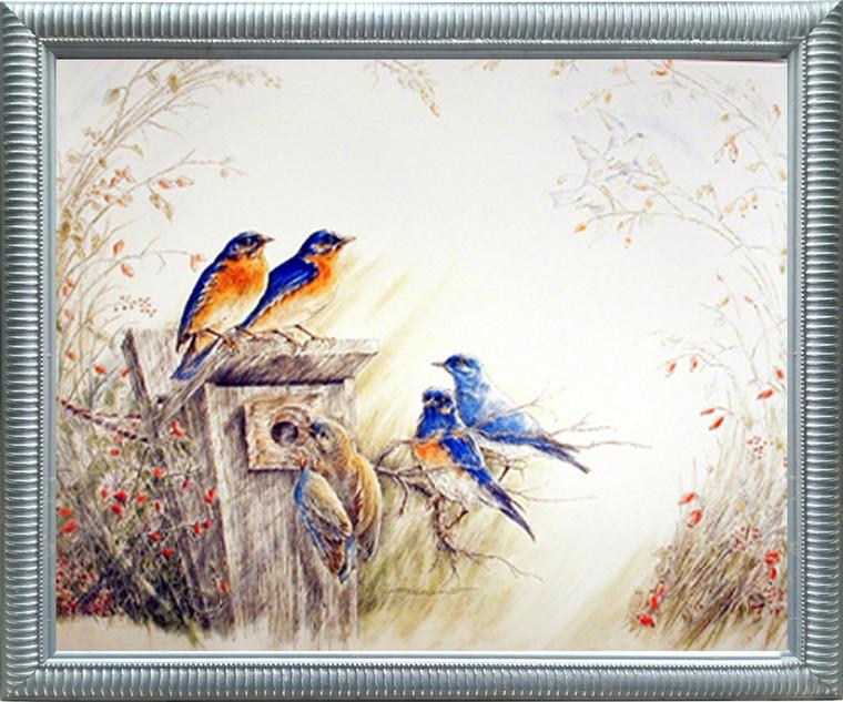 Framed Wall Decor Picture Bluebirds on Tree Feeder Bird Animal Silver Art Print (20x24)