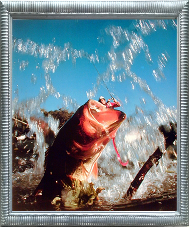 Impact Posters Gallery Fish Hooked Lure Bass Fishing Oak Ocean Silver Art Print Framed Wall Decoration Picture (20x24)