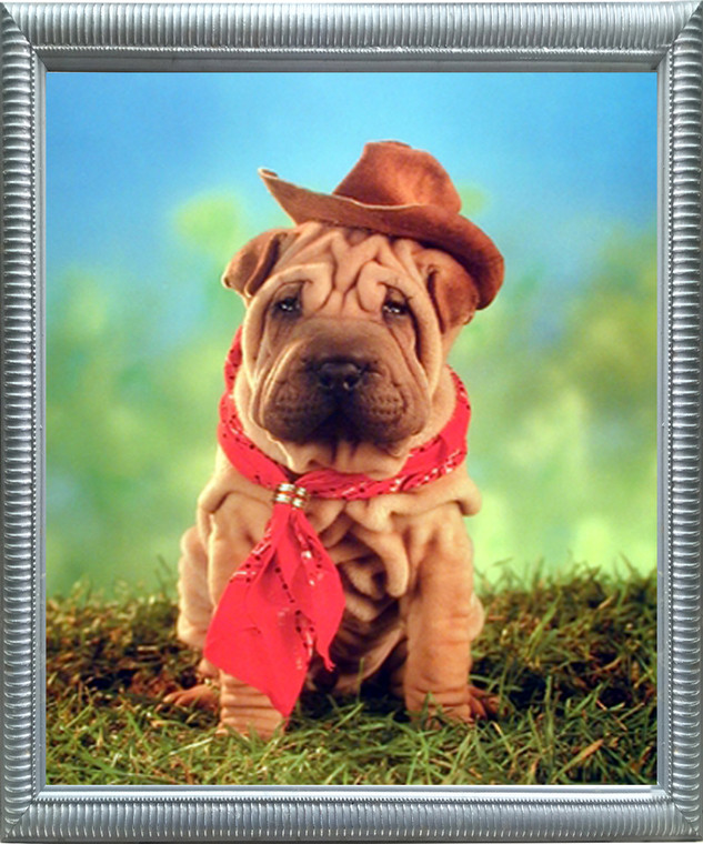 Impact Posters Gallery Funny Chinese Shar Pei Cute Puppy Cowboy Kids Room Silver Framed Wall Decoration Picture Art Print
