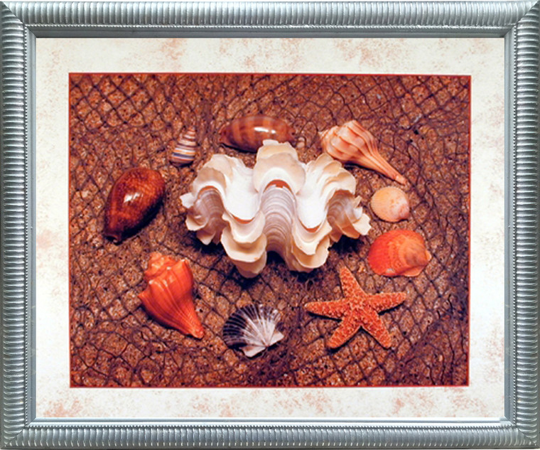Impact Posters Gallery Starfish with Seashell Ocean Wall Bathroom Decor Silver Framed Picture Art Print