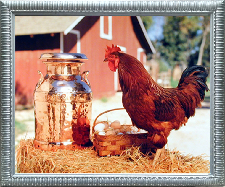 Impact Posters Gallery Country Chicken Rooster Milk Can and Egg Basket Wall Decor Silver Framed Picture Art Print