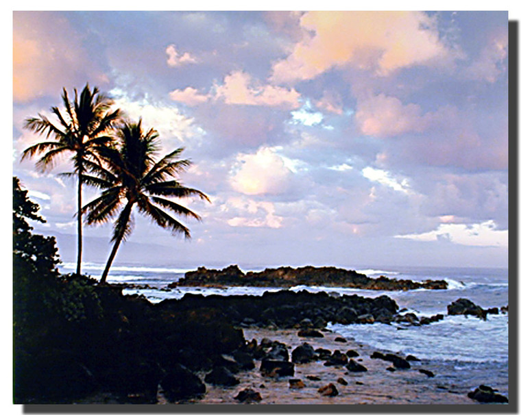 Tropical Sunset Art Posters