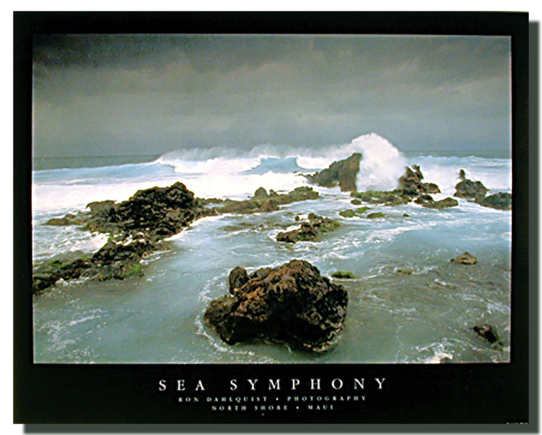 Sea Symphony Posters