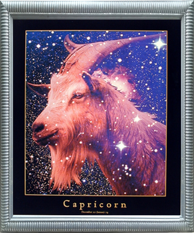 Impact Posters Gallery Astrology Capricorn Dec 23 -Jan 19 Zodiac Silver Framed Picture Art Print