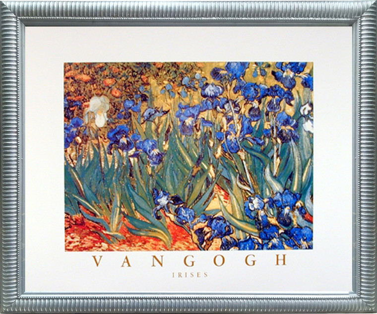 Impact Posters Gallery Irises Flower Garden (Floral) Vincent Van Gogh Fine Silver Art Print Framed Wall Decoration Picture (20x24)