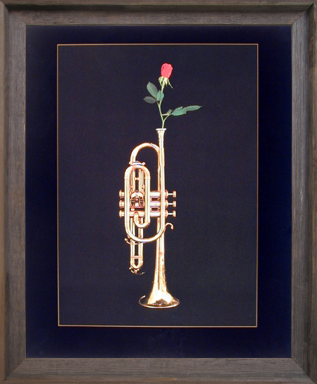 Impact Posters Gallery Trumpet with Rose Musical Instrument Wall Barnwood Framed Picture Art Print (19x23)