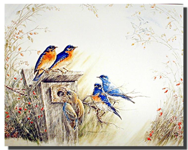 Bluebirds Posters