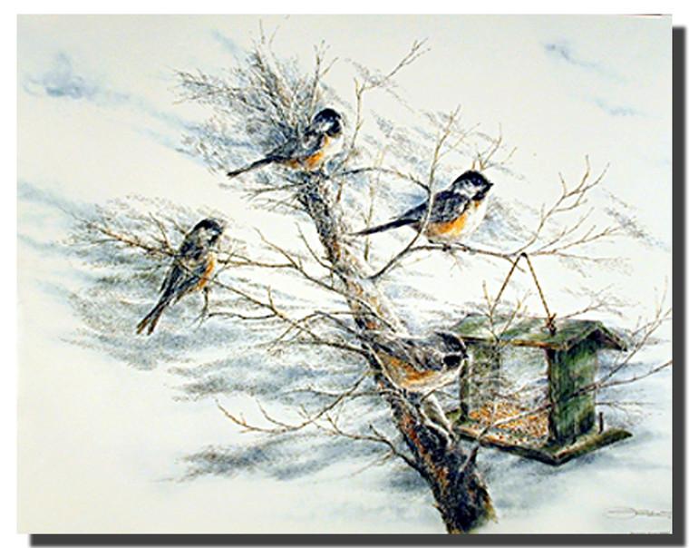 Chickadee Birds Posters