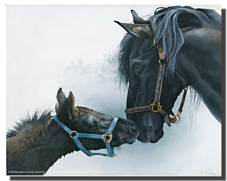 Black Mare and Colt Poster