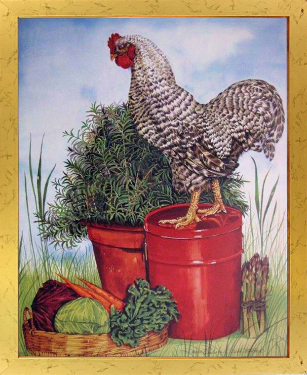 Chicken Picture Art Print Framed Living Room Wall Decor Barred Plymouth Rock Rooster Golden Poster
