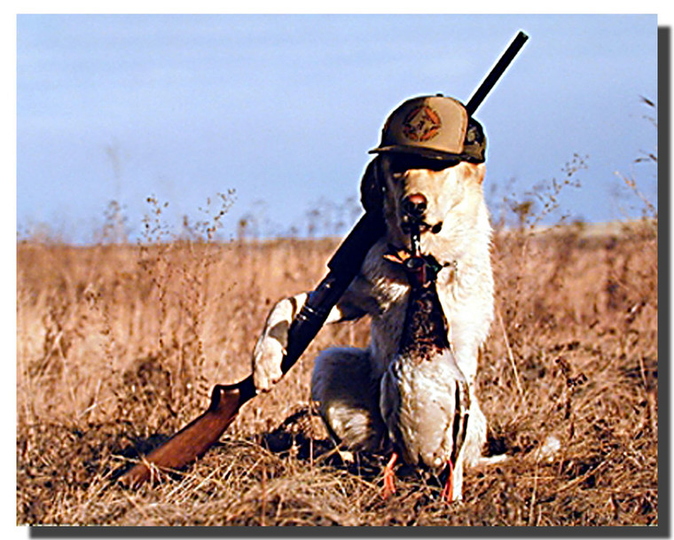 Dog Gone Hunting Poster