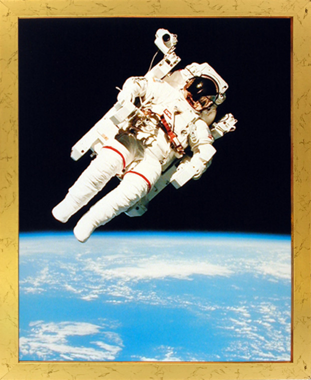 Impact Posters Gallery NASA Astronaut in Space Educational and Motivational Golden Picture Art Print Framed Wall Decor (18x22)