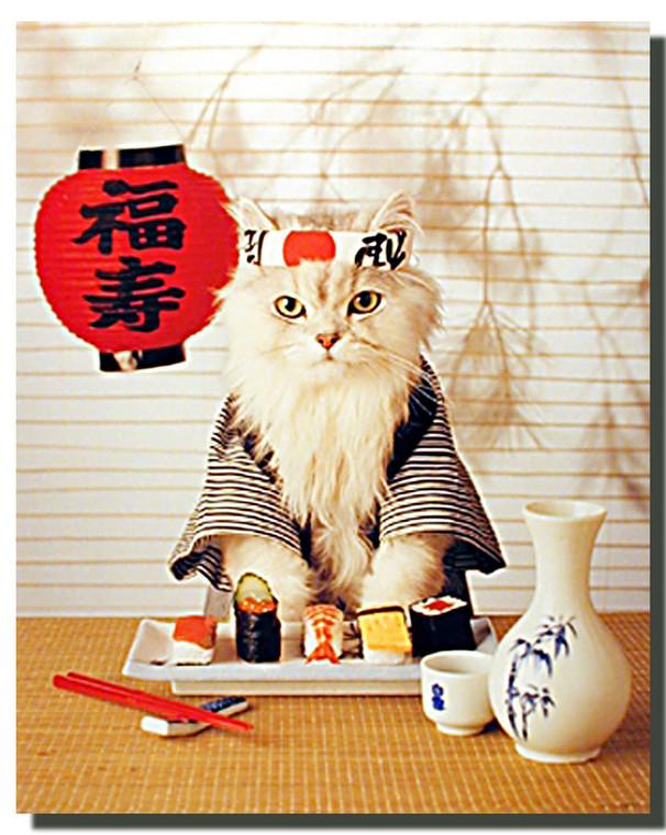 Sushi Cat Art Prints