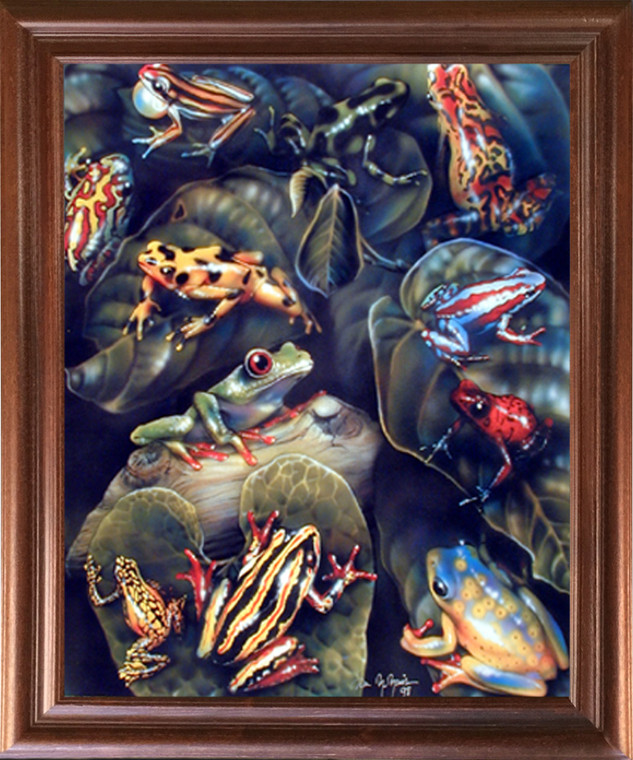 Framed Wall Decor Frog & Toad Collage (Amphibian) Educational Kids Room Mahogany Picture Art Print (18x22)