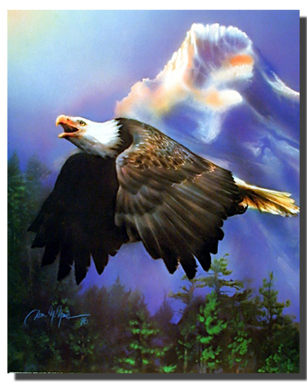 Bald Eagle Picture Posters