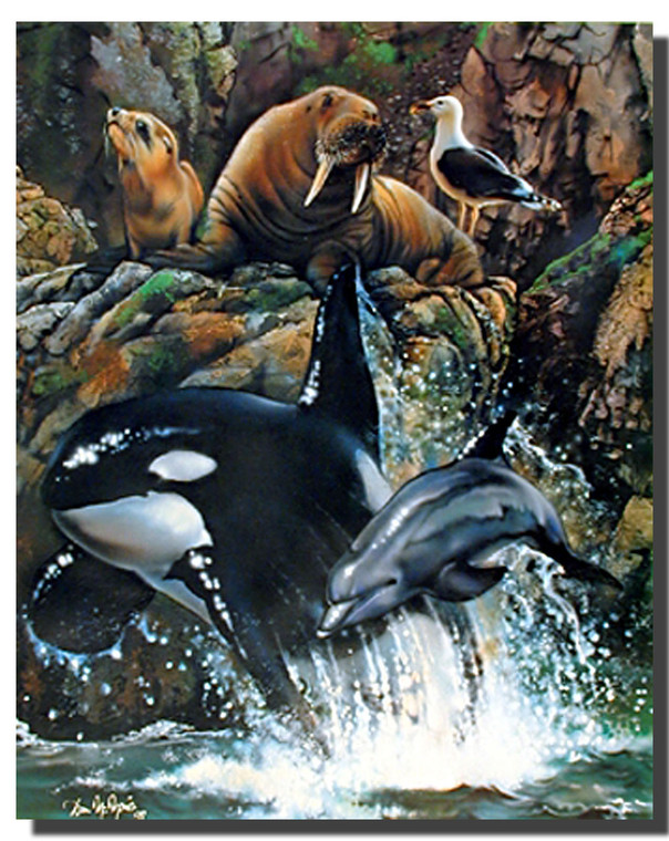 Sea Life Posters