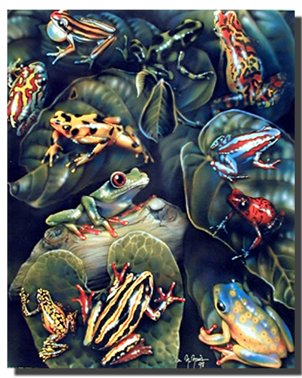Frog Collage Posters