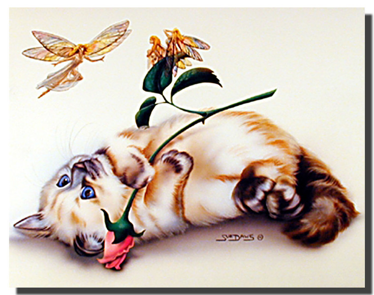 Cat Poster- Small Wonder