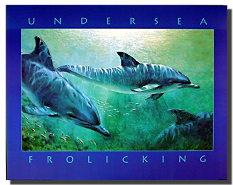 Dolphins Poster- Underwater