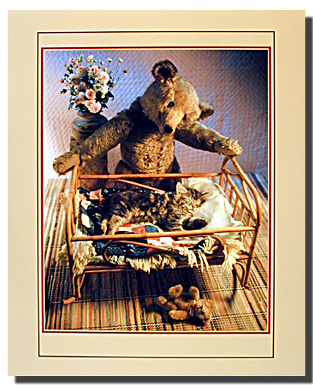 Antique Teddy and Crib Cat Poster