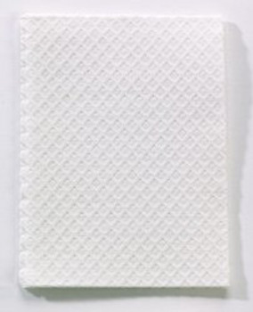 Procedure Towel - White - 500's