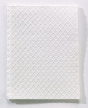 Procedure Towel - White - 500's