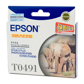 EPSON T0491 Black Ink Cartridge