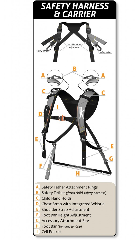 pbr-carrier-and-harness-w-letters-desc-590x1024.jpg