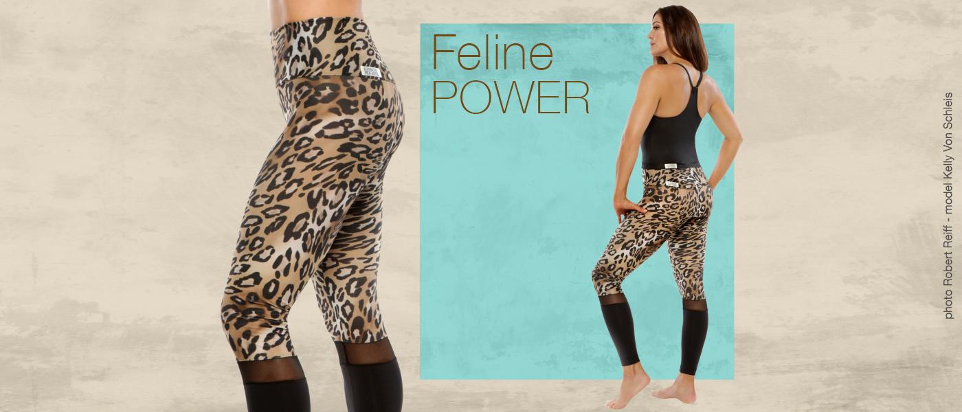 felinepower-web.jpg