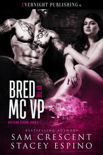 Genre: Erotic Contemporary Romance  Heat Level: 3  Word Count: 38, 100  ISBN: 978-0-3695-0225-4  Editor: Audrey Bobak  Cover Artist: Jay Aheer