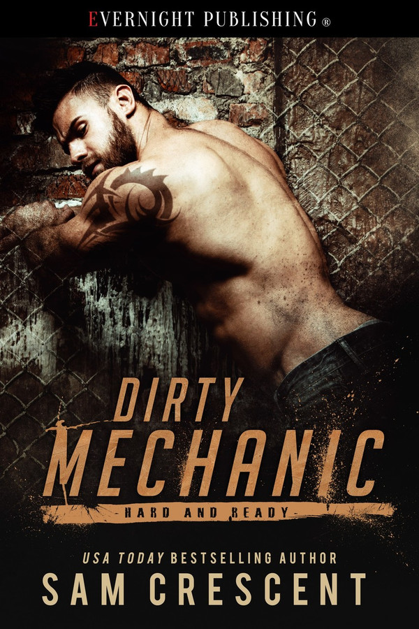 Genre: Erotic Contemporary Romance  Heat Level: 3  Word Count: 19, 330  ISBN: 978-1-77339-524-1  Editor: Karyn White  Cover Artist: Jay Aheer